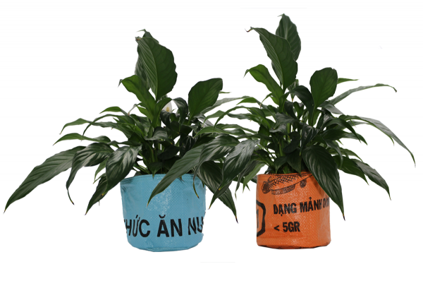 ISYbe Bags Pflanzenkübel / Aufbewahrungskorb - Übersicht