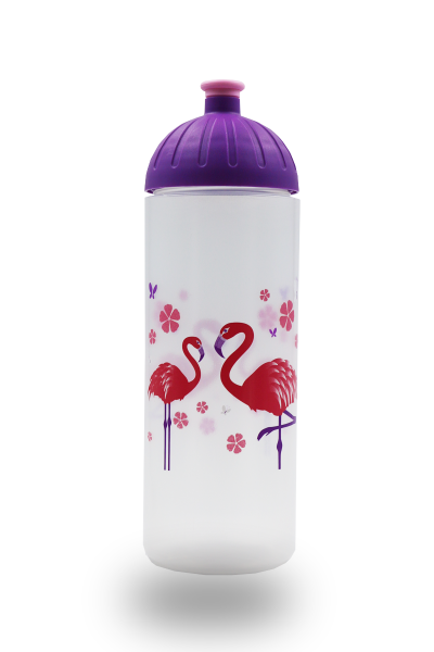 ISYbe Trinkflasche 0,7L Flamingo